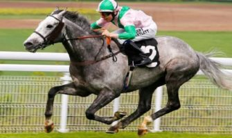 Horse Racing Daily and Weekend Tips